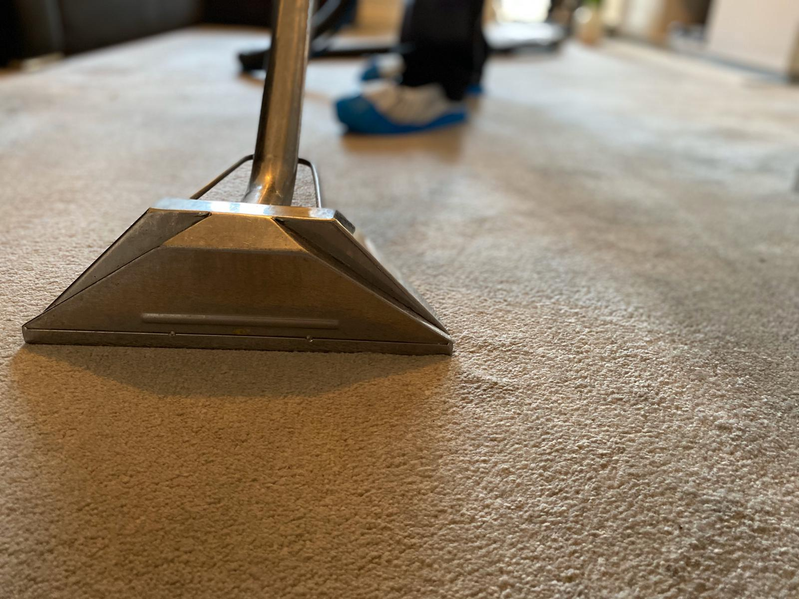 zoomed image of carpet cleaning in action