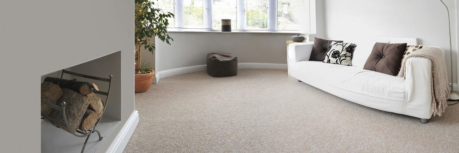 Image used for carpet cleaning page of bubble & squeak carpet & upholstery cleaning