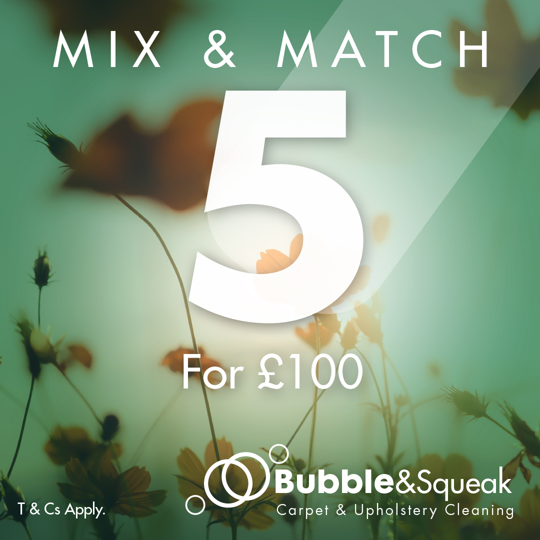 Bubble & Squeak Carpet & Upholstery Cleaning Spring Mix n Match any 5 items for £100